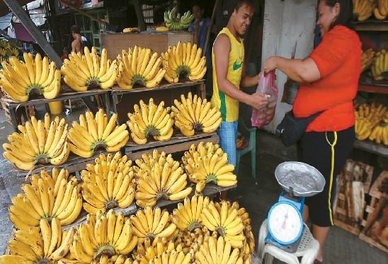 필리핀 바나나.