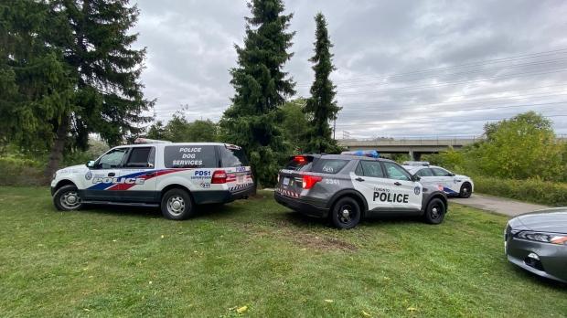 토론토 이토비코 고속도로 다리 인근에서 잠을 자던 노숙자가 흉기에 피살된 사건이 발생한 현장에 경찰 순찰차들이 세워져 있다.